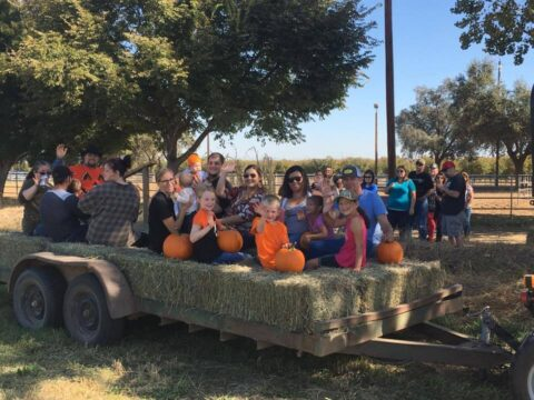 Wheeler Ranch Pumpkin Festival