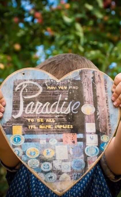 Paradise: Resiliency on The Ridge